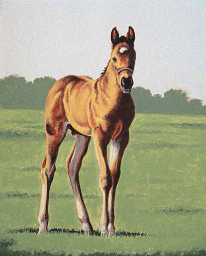 Learn how to emulate easy horse drawings with this free tutorial!