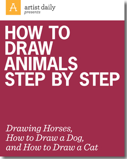 Step by step tutorial for learning how to draw dogs, cats, horses, and more.