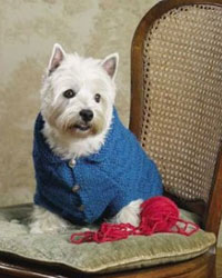 Knitting for Dogs: A Dog Sweater Pattern Example from Dogs in Knits