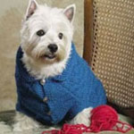 Knitting Patterns for Pets