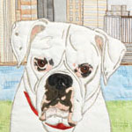 Pet Art and Textile Art for Animals