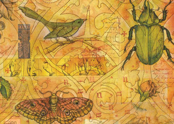 Creative Quilt Design: Tea and Entomology A Stitched Paper Quilt by Judy Coates Perez