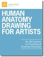 Learn-How-to-Draw-a-Human