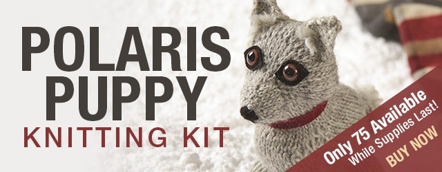 Polaris Puppy Kit