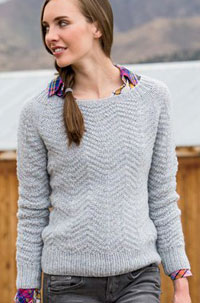 Feathernest Raglan by Amy Miller