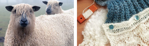 rare sheep breeds, navajo plying, fiber wool, processing wool, reeling silk, fiber processing