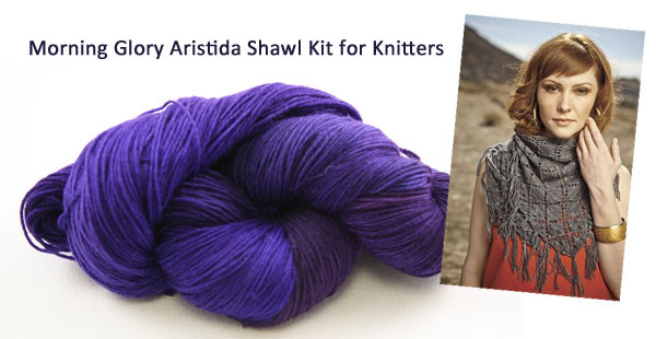 morning glory aristida shawl kit
