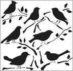 Bird Designs: Birds 12x12 Stencil
