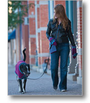 Dog Sweater Patterns: Fetching Dog Sweater, Bag, and Mittens