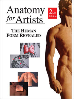 Anatomy for Artists The Human Form Revealed 2nd Edition Video Download