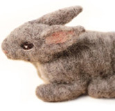 bunny cropped