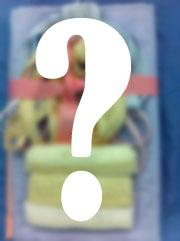 Martha Pullen Mystery Bag 2